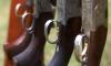 Старинные пистолеты и россыпь патронов нашли в квартире на Фарфоровской