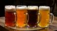 Запрет на продажу пива ударил по всем