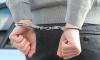 """У безработной петербурженки из """"Ауди"""" украли """"Айфон 10"""", 2000 рублей и 150 евро"""