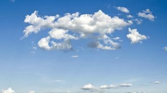 Эксперты оценили весенний воздух в Петербурге