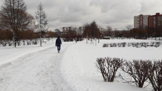 Депутаты Петербурга не включили парк Малиновка в список охраняемых зеленых зон