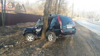 "Nissan X-Trail ""обнял дерево"" в Красносельском районе Петербурга"