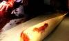 В Новгородской области молодые люди убили престарелую вдову ветерана и похитили награды