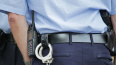 В Металлострое полиция задержала хулигана, который ...