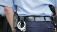 Полиция задержала преступников, которые ограбили женщин ...