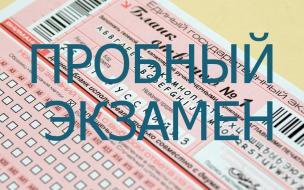В Выборгском районе прошел репетиционный экзамен по русскому языку в формате ЕГЭ
