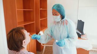 Почему в Петербурге стали меньше тестировать на коронавирус
