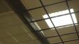 ФСБ признала применение электрошокеров к задержанным ...