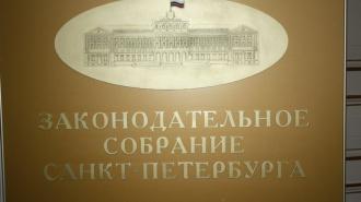 Депутатов ЗакСа встретили одиночными пикетами