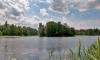 В Парголово в Финском озере утонула девочка. Ее брата удалось спасти