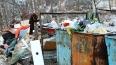 Петербурженка выбросила новорожденную девочку в помойку