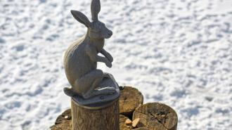 Памятник зайцу у Петропавловской крепости вернут к Иоанновскому мосту 5 мая