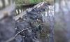 В соцсетях спорят, кто засыпал исток речки в Приозерском районе