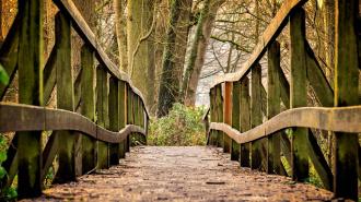 Ленавтодор планирует отремонтировать 14 мостов за летний сезон