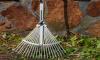 Лишенных дохода жителей Ленобласти могут приобщить к общественным работам