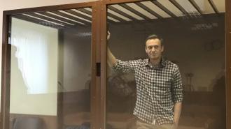 Хаматова и Ахеджакова обратились к главе ФСИН из-за здоровья Навального