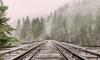 """Поезда """"Аллегро"""" прекратят движение из-за ремонта железных дорог Финляндии"""
