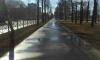 В Петербурге дорожники за день отмыли от зимней грязи 120 улиц