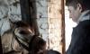 В Гатчине призвали помочь подопечным конного клуба