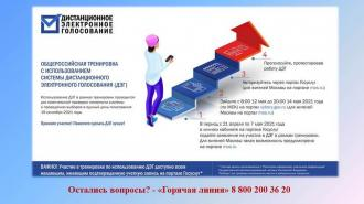Дистанционное голосование протестируют в Ленобласти