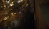 Очевидцы: в пожаре на Дунайском проспекте погибло два человека
