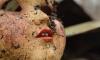 В заброшенном тубдиспансере Кронштадта извращенец изнасиловал маленькую девочку