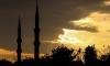 Лавров уличил Турцию в тайных переговорах с ИГИЛ