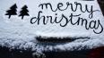 В новогодние праздники покой выборжан будут охранять ...