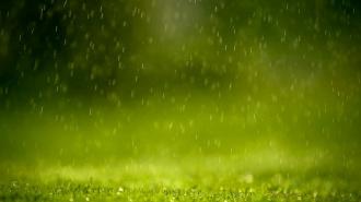 В Новгороде прошел дождь из стекловолокна
