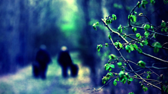 В Ленобласти спецназ спас пенсионерку, 5 дней плутавшую в лесу