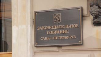 Петербургских социальных предпринимателей могут освободить от имущественного налога