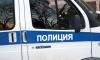 В Петербурге двоих полицейских избили наркоман и пьяница