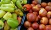 РосПотребНадзор отменил эмбарго на ввоз венгерских и итальянских овощей