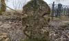 """В Ломоносовском районе """"черные археологи"""" разрушили старинное кладбище"""