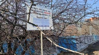 """Чиновники рекомендуют жителям Купчино заинтересоваться другими """"зелёными зонами"""""""