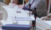 Омбудсмен Шишлов принял жалобы на 18 МО из-за выборов