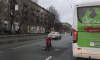 """В Приморском районе установили необычный """"дорожный знак"""""""