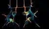 Сirque du Soleil обязали выплатить 25 тысяч долларов за гибель артистки