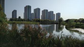 Парки и скверы во Фрунзенском районе массово открывают после просушки