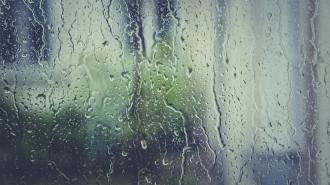 В Петербурге начало рабочей недели начнётся с дождей