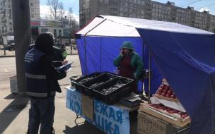 В Петербурге снесли незаконные точки по продаже корюшки