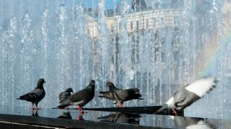 В среду петербуржцев порадует по-июльски жаркая погода