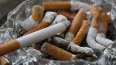 В Петербурге пресекли ввоз контрафактных сигарет из Моск...
