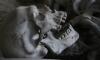 В лесу Ленобласти нашли скелет психически больного мужчины