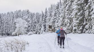 На Камчатке во время лыжного марафона скончался один из участников