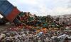 За 4 года в России уничтожили 32 тысячи тонны санкционки