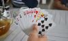 Петербурженка организовала казино в съемной квартире