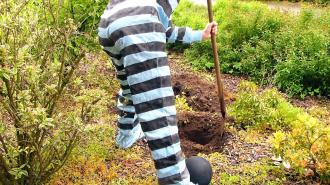 Жителя Выборга приговорили к исправительным работам за уклонение от уплаты алиментов