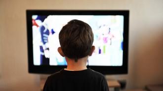 Телеканалы рассказали о программе передач в дни новогодних каникул