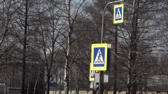 """В Петербурге установят 145 светофоров на солнечных батареях и 55 """"лежачих полицейских"""""""